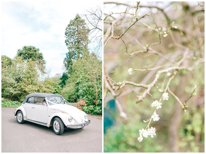 Hexham Winter Gardens Wedding Photographer 0226