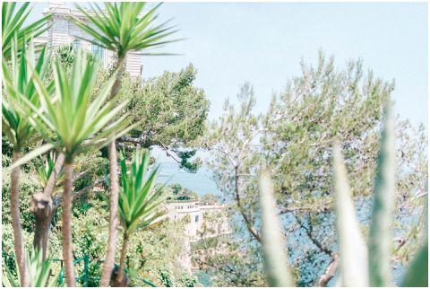 Monaco wedding monte carlo 0017(pp w480 h322)