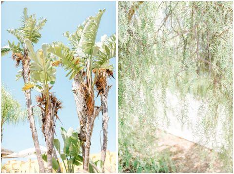 Algarve wedding destination wedding Portugal 010(pp w480 h357)